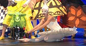 My Fairy Tale musical - Swan